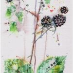Watercolour with Japanese paper